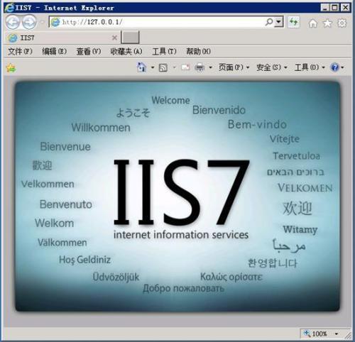 """网站IIS日志对SEO优化的作用"""""""